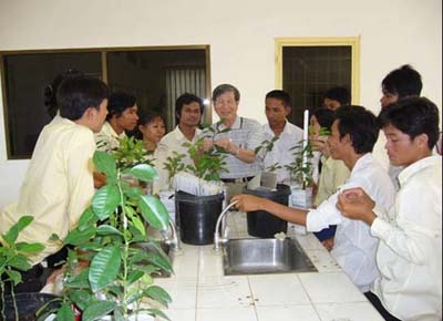 Figure 5 Laboratory Exercise on Grafting Technique for the Rapid Propagation of Pathogen-Free Seedlings at Rua, Cambodia.