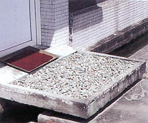 Figure 2 Screenhouse for Citrus Foundation Stock. the Step Has an Overhang and Gravel, to Prevent Soil Splashes