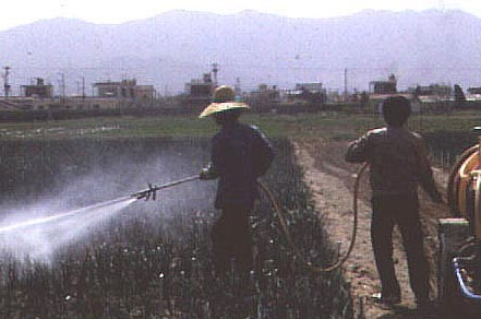 Figure 2 Many Asian Farmers Are Not Aware of the Risks Involved in Applying Pesticides